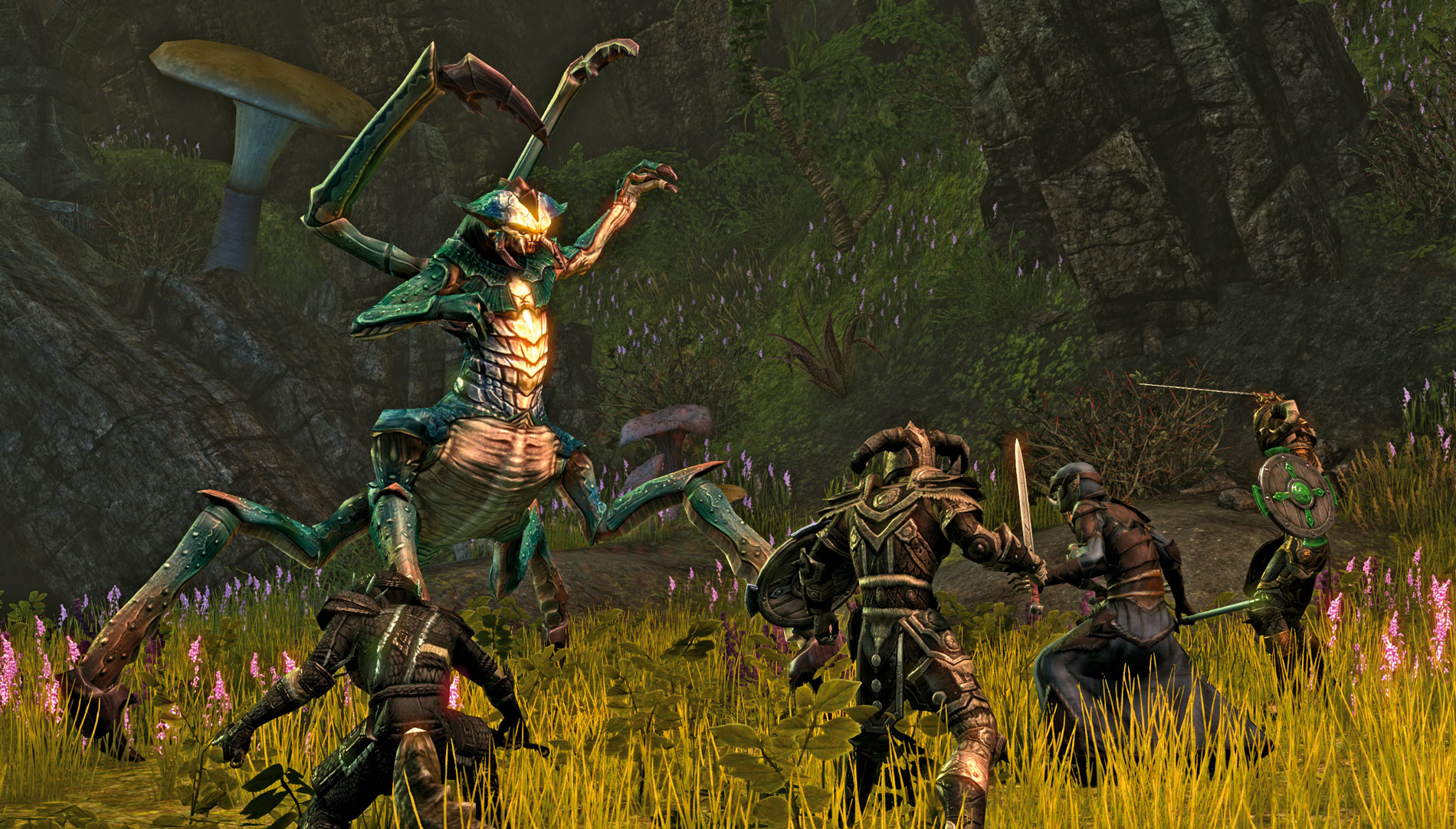 The-Elder-Scrolls-Online-bug-attack