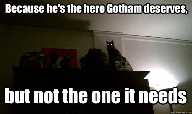 Gotham Cat