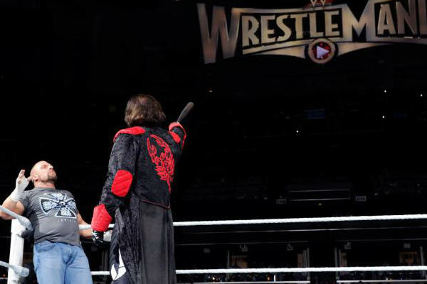 sting-triple-h-wrestlemania-600x400
